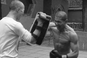 kung-fu sanda