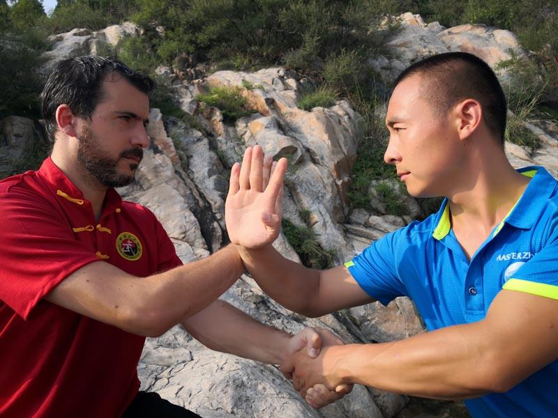 apprendre le kung fu